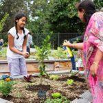 Hindu Council organised a multi-faith Eco-Forum in 2011