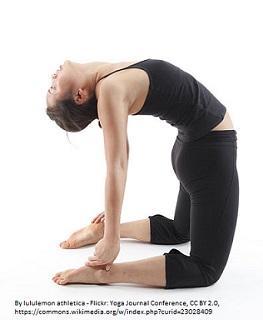 Australian city Mayor promotes Yoga for mental health